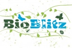 Baby BioBlitz Weekend
