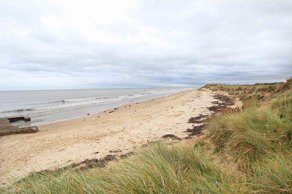 Beachcombers Retreat, Low Hauxley beach
