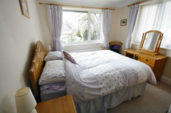 sawmill bed 2