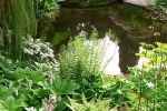 quarry pond is near Bide-a-Wee Cottage Gardens and Nursery