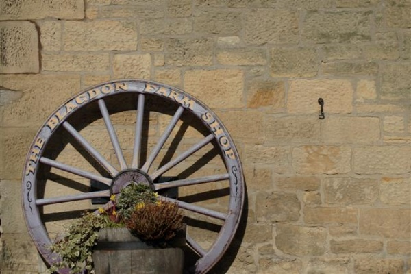 Blagdon Farm Shop - old wheel