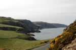 Burnmouth to St. Abbs Head, Berwickshire