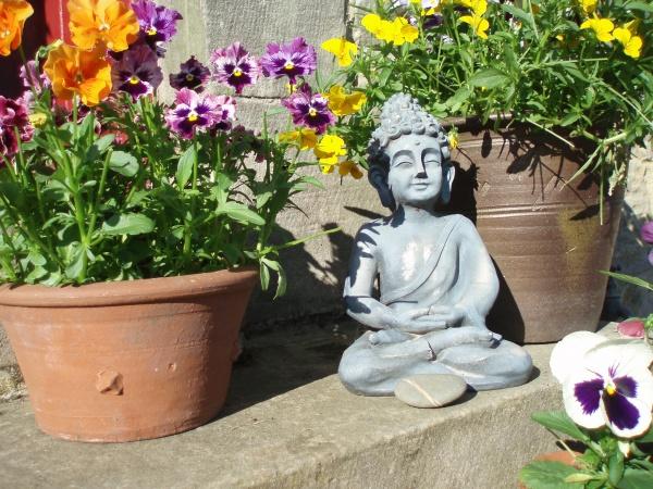 sunny pots