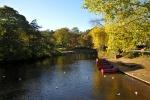 Canoeing Starter Sessions