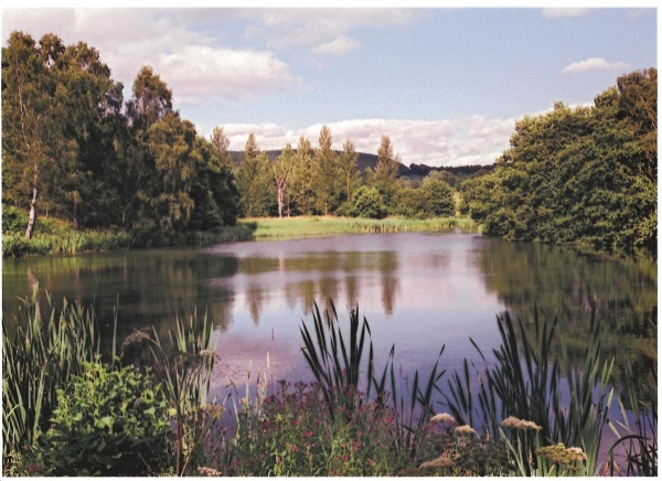 Chillingham lake