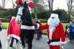 Santa and Merlin the Giant  'reindeer' is near Boathouse Cottage