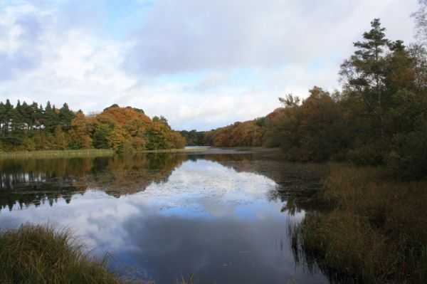 Guided Ranger Walk: Rothley Lake