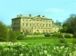 Daffodils and Howick Hall