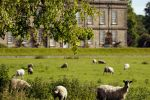 NGS Open Day – In the Footsteps of Capability Brown
