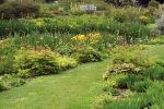 Northumberland Gardens Tour Package