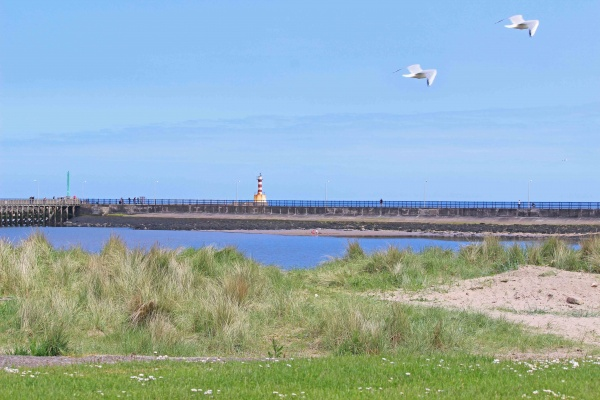 Amble Harbour and Pier