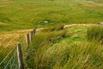 Pennine Way-Chew Green –The Border Fence