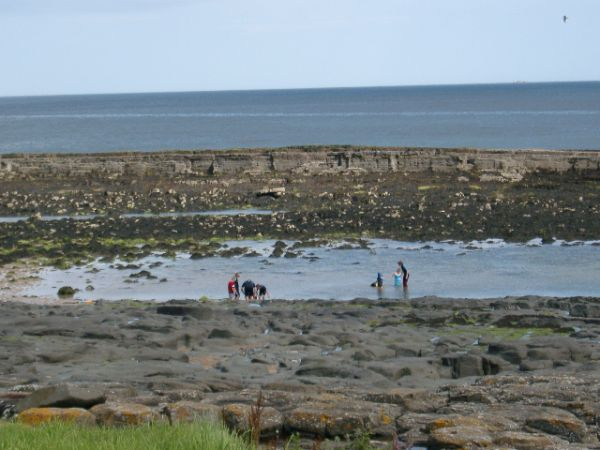 Rock pooling below Rock Ville