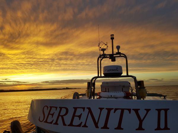 Serenity II