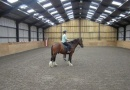 Equestrian Centre is near River Breamish Caravan Club Site