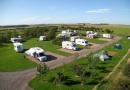 caravan pitches is near Chillingham Wild Cattle