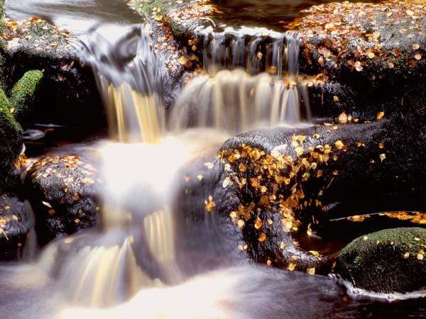 Northumberland tranquility