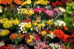 Food & Flower Fayre