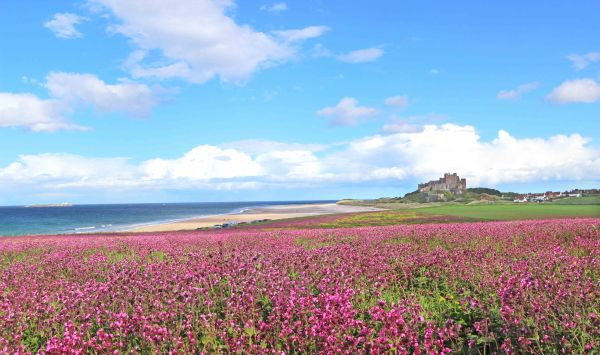 Bamburgh Castle with views of the Farne Islands and Holy Island