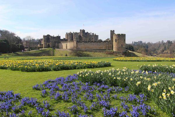 Alnwick Castle in Springtime