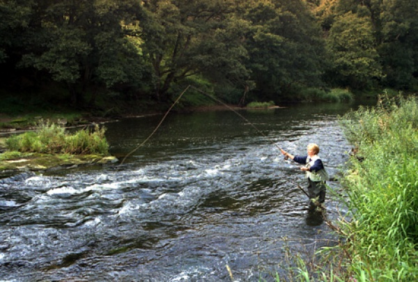 River fishing in the Tweed