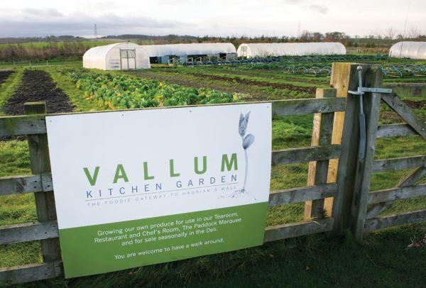 Vallum Kitchen Garden