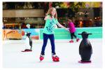 Winter Festival Ice Rink