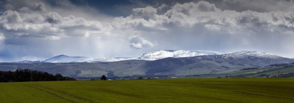 Cheviot from Hay Farm