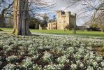 Harry Seddon from Retirement Rambles talks about their recent visit to Belsay Hall, Castle and Gardens