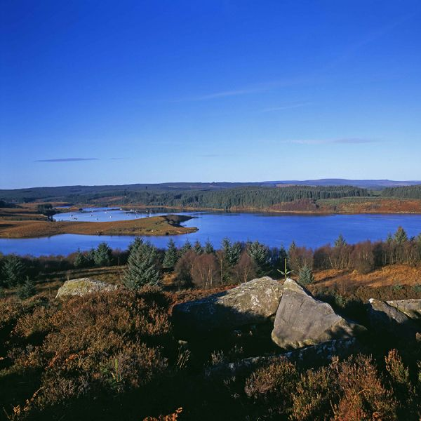 One visits just not enough....Find out what Harry Seddon got up to on a recent visit to Kielder Water & Forest Park
