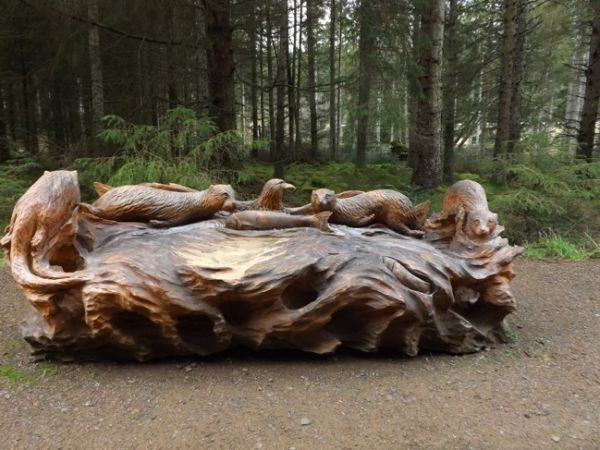 5 things to see and do at Kielder