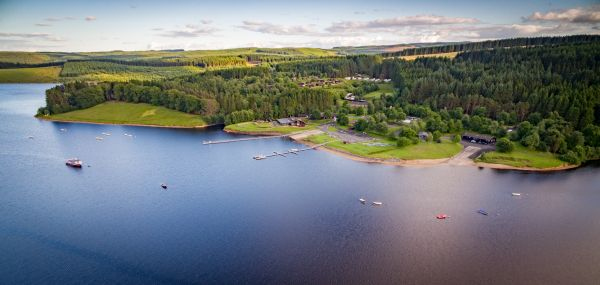 Five Things to Do for Exploring the Best of Kielder's Wildlife