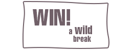 WIN a Wild Time in Northumberland