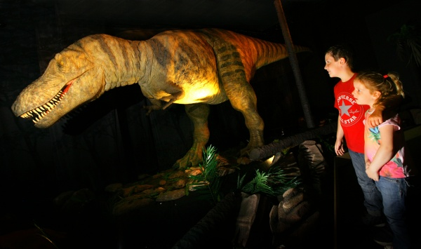 Catch them while you can - Dinosaurs making tracks after half-term