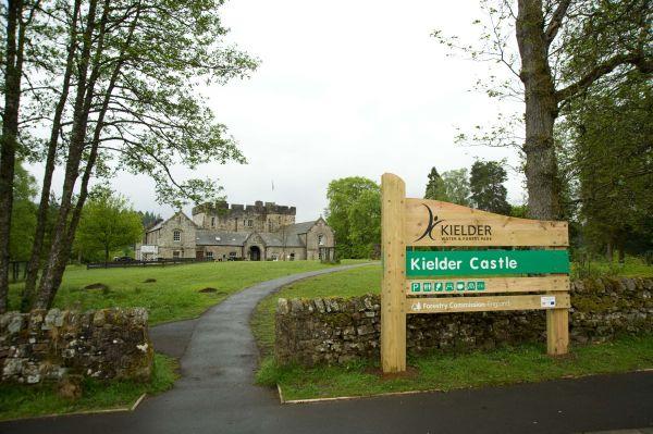 Art & Architecture fenced in at Kielder Castle