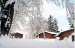 Kielder holiday destination wins top tourism award