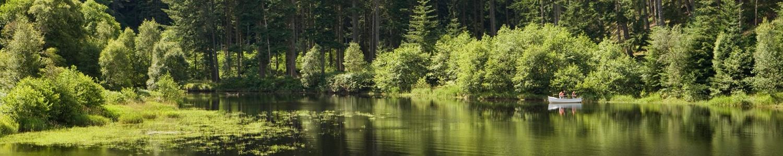 Kielder Water & Forest Park tourist information