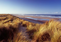 Druridge Bay Country Park