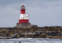 The Farne Islands