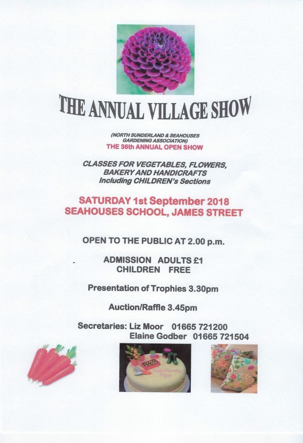 36th Annual Village Show