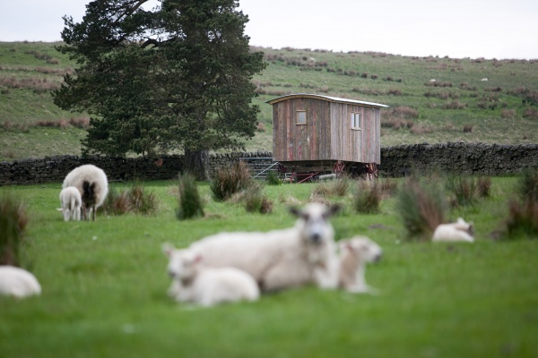 A beautiful secluded Shepherds Hut