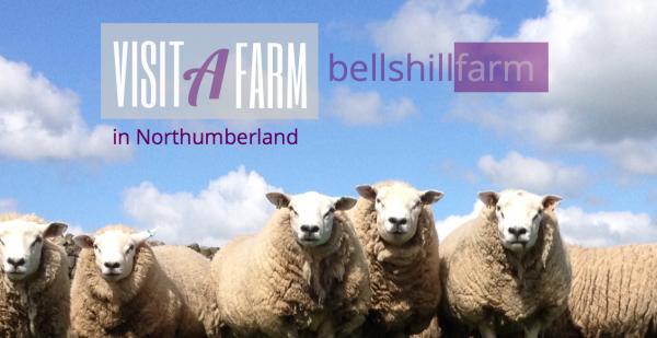 Bellshill Farm