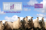 Bellshill Farm is near Apple Pie Cottage