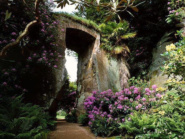 Belsay Quarry Gardens