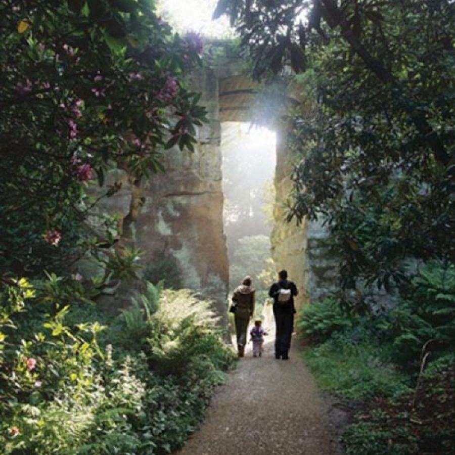 Stunning Quarry Garden at Belsay