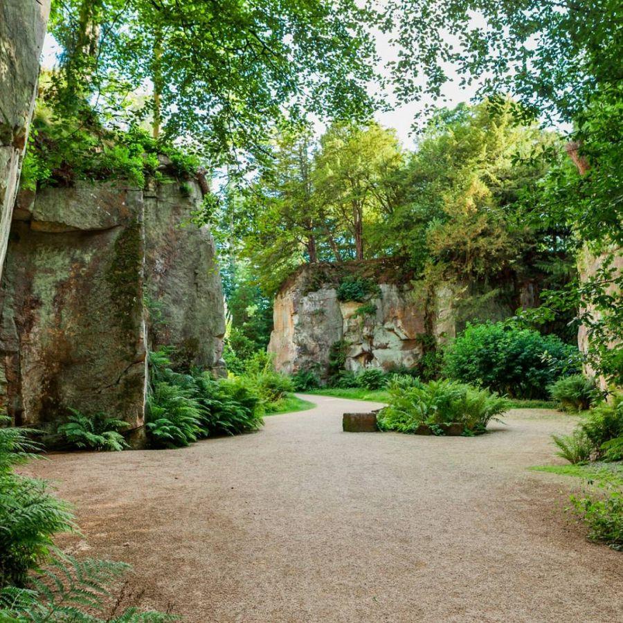 Belsay Quarry Garden