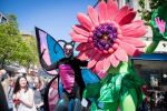 Bob the Butterfly & Gerry the Gerbera Street Theatre