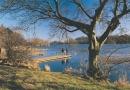 Bolam Lake Country Park is near Belsay Hall, Castle and Gardens