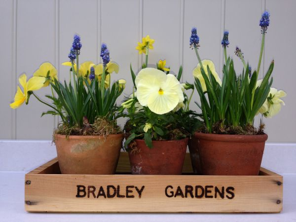 Bradley Gardens  is near Appletree Cottage
