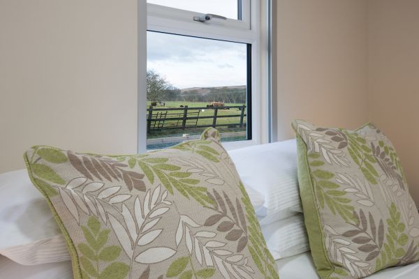Some rooms have views of the Hebridean sheep